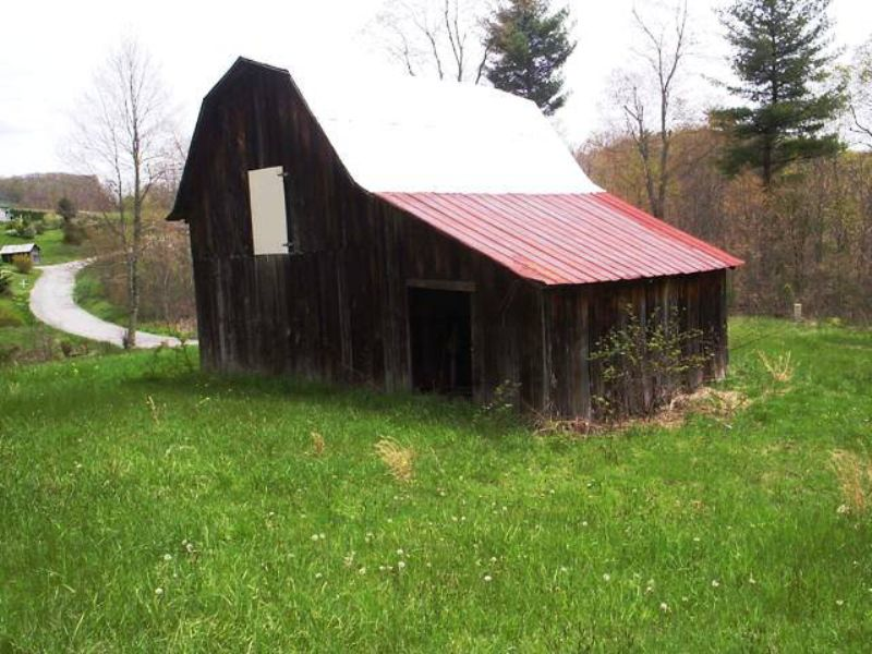 8+ Acres~ Borders Jeff, Ntl. Forest : Troutdale : Grayson County : Virginia