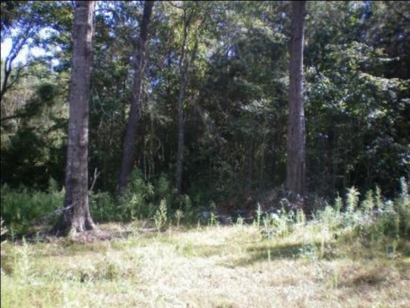 78.5 Acres With Paved Road Frontage : Canton : Madison County : Mississippi