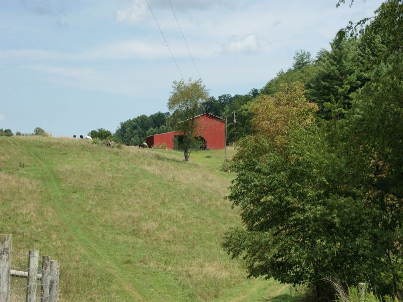 139.96 Acres ~ Only $2860 Per Acre : Speedwell : Wythe County : Virginia