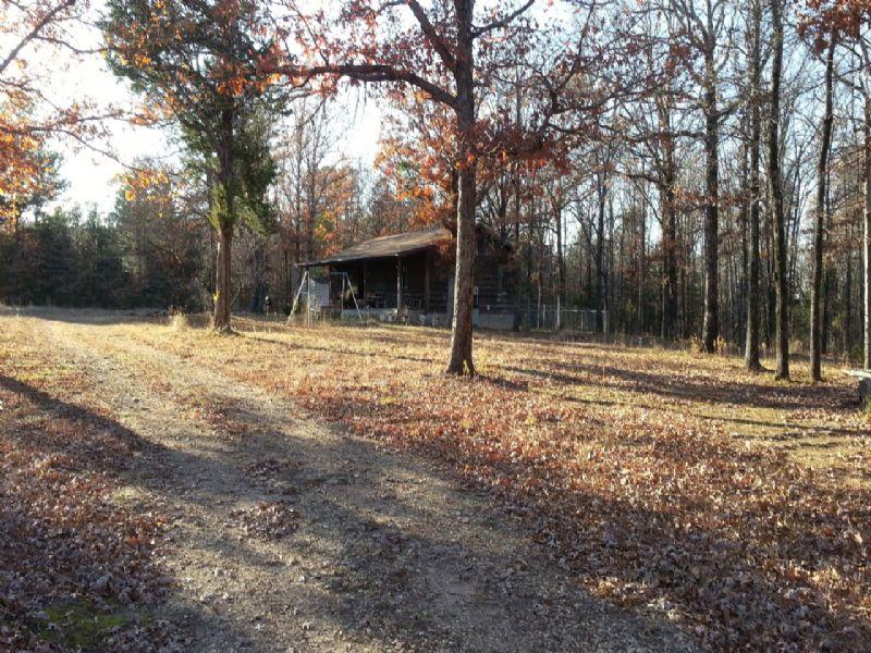 Cabin On 10+/- Acres : Mountain View : Arkansas County : Arkansas