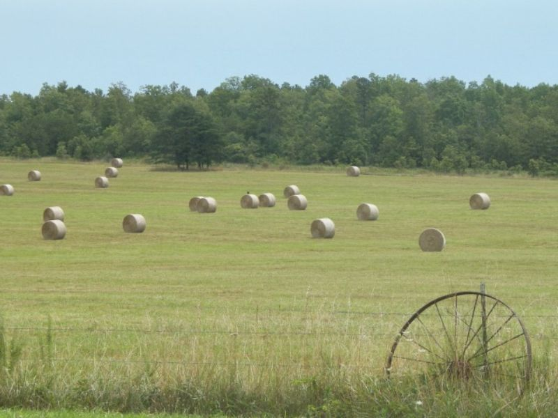 Beautiful Grass And Hay Farm : Summersville : Shannon County : Missouri
