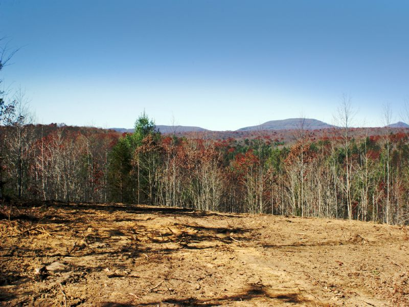 Vast Views Atop Cumberland Plateau : Crossville : Rhea County : Tennessee