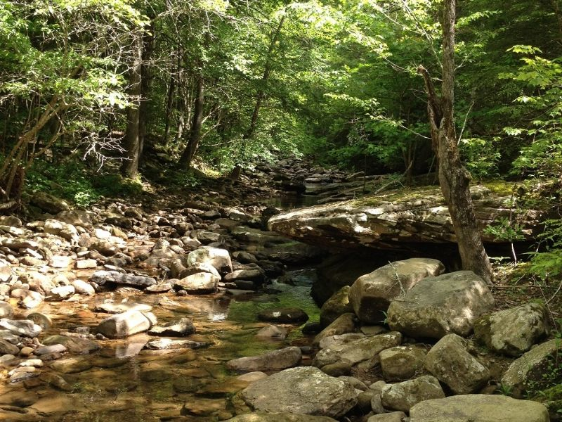 Cumberland Creeks Lot #10 : Crossville : Rhea County : Tennessee