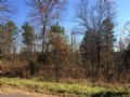 5.159 Ac. Wooded With Views