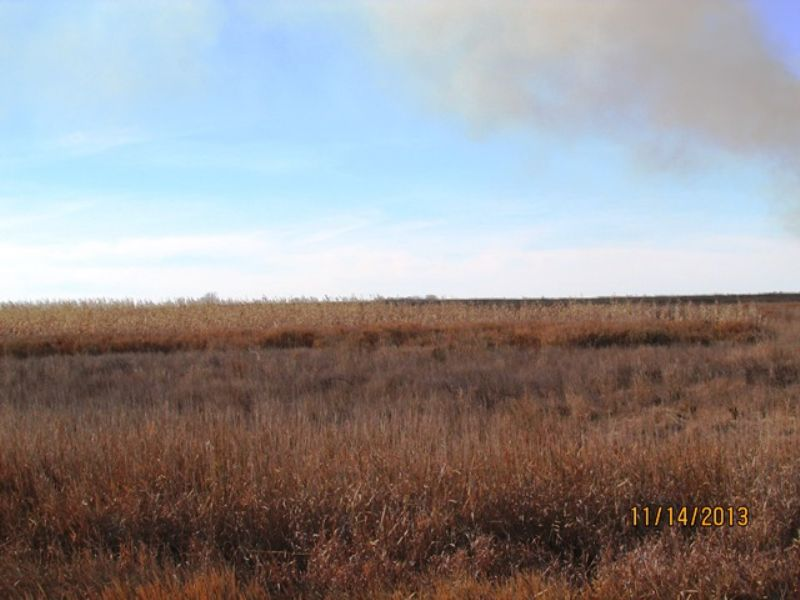 160 Acre Land Auction : Hitchcock : Beadle County : South Dakota