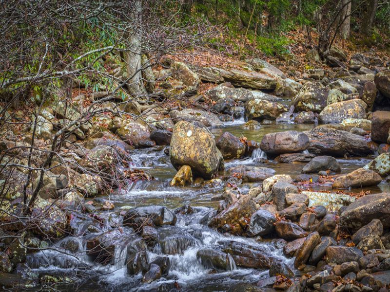 Over 1,000 Feet Of Creek Frontage : Grandview : Rhea County : Tennessee