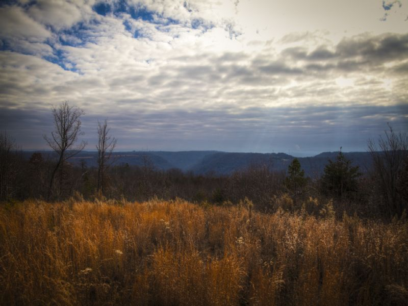 Reduced Price...now $29,900 : Crossville : Rhea County : Tennessee