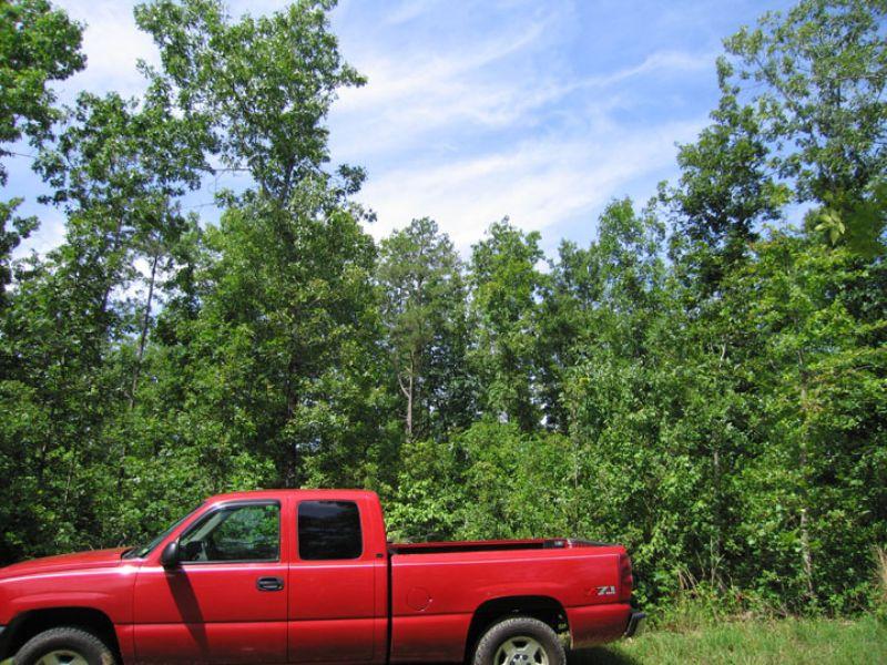 $500.00 Down - Own It Now : Winona : Shannon County : Missouri