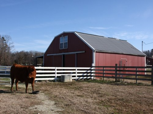 13 Acre Turn Key Mini Farm : Ashville : Saint Clair County : Alabama