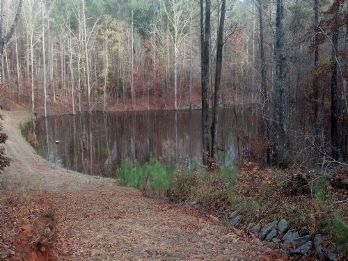 Perfect Hunting/fishing Tract : Forsyth : Monroe County : Georgia