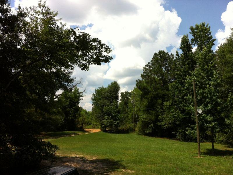 8.5 Acres Near Millbrook : Millbook elmore : Elmore County : Alabama