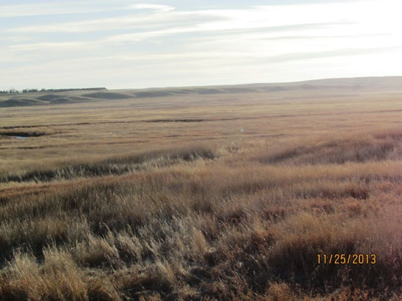 313.15 Hunting Paradise S.d. : Wessington Springs : Jerauld County : South Dakota