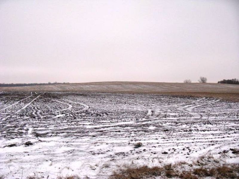 154 Acre Miner County Land Auction : Howard : Miner County : South Dakota