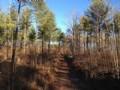 Burban Creek Plantation Lots