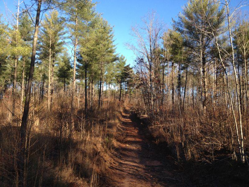 Burban Creek Plantation Lots : Traveler's Rest : Greenville County : South Carolina