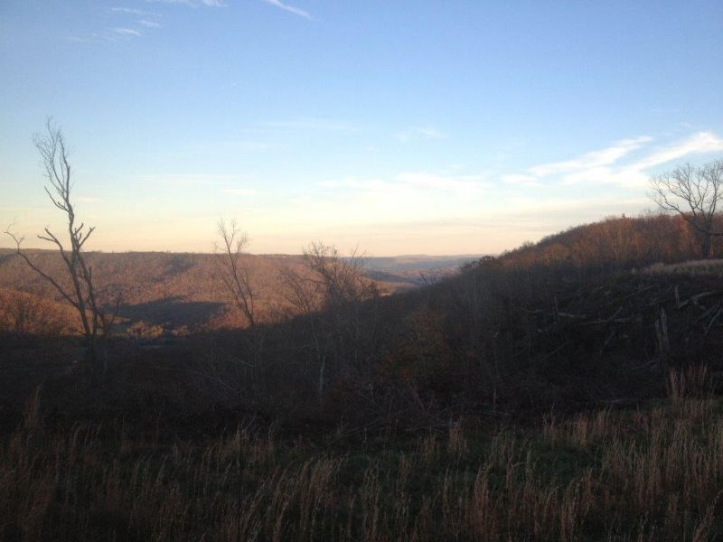 Owner Financing 7.04 +/- Acres : Sewanee : Marion County : Tennessee