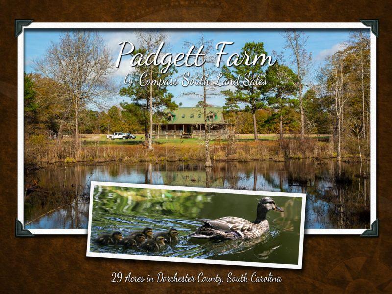 Padgett Farm : Dorchester : Dorchester County : South Carolina