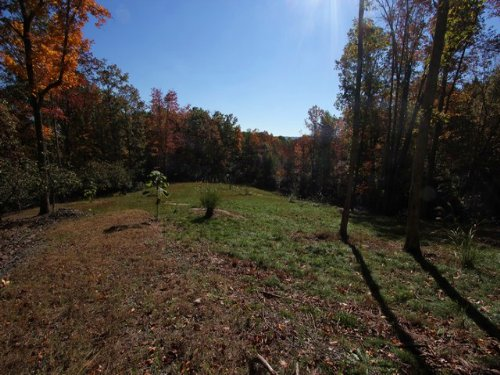 Acreage In Blue Ridge Mountains : Independence : Grayson County : Virginia