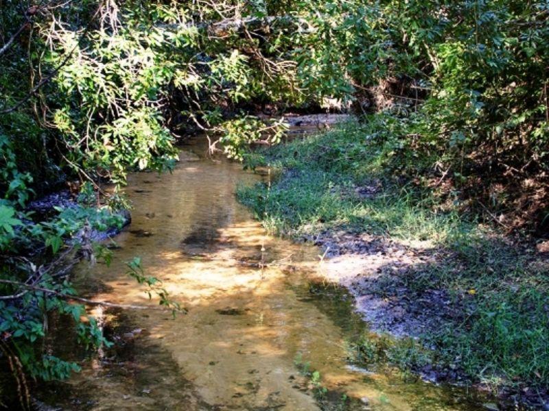 Walker Branch : Bainbridge : Decatur County : Georgia