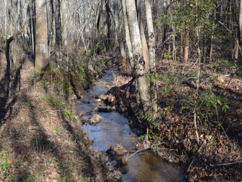 16.22 Acres On Highway 11 : Landrum : Greenville County : South Carolina