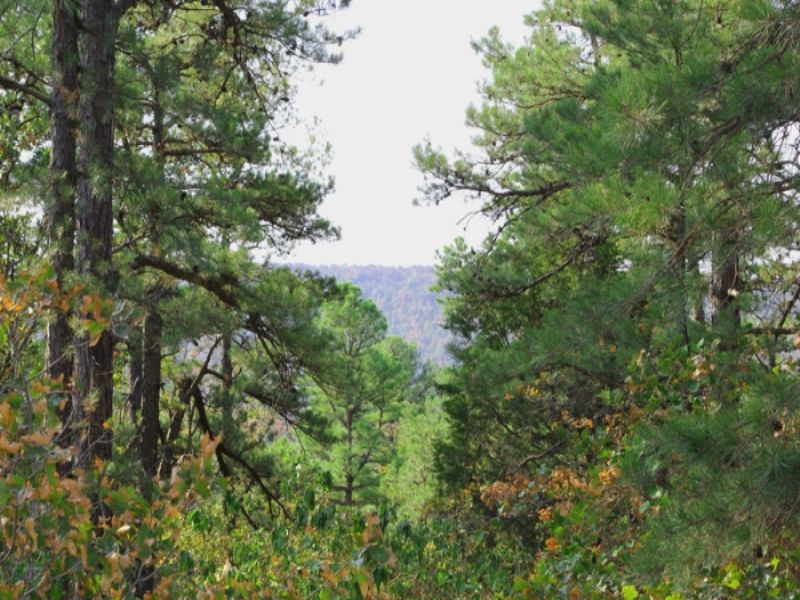 14.25 Acre Trophy Ridge Ii. Terms : Mcalester : Pushmataha County : Oklahoma