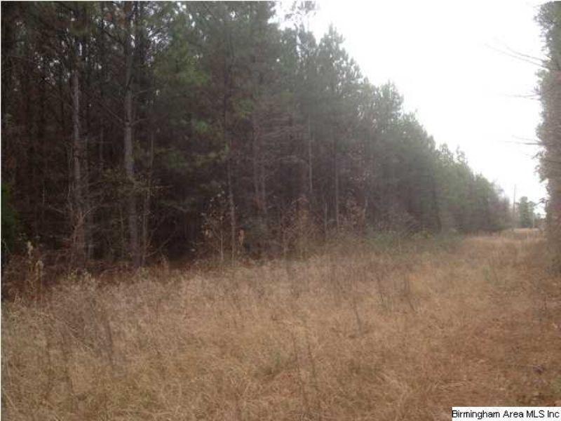 Hwy 231 Ashville : Ashville : Saint Clair County : Alabama