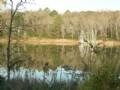 Bartow/ Floyd County Etowah River