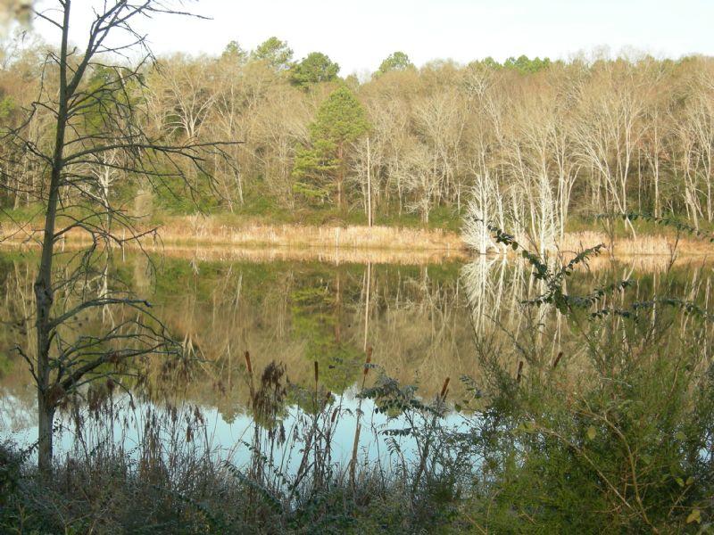 Bartow/ Floyd County Etowah River : Kingston : Bartow County : Georgia
