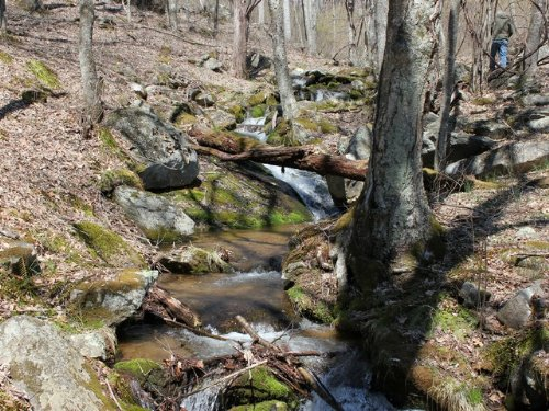 Lot# 111 Mountain Land W/ Waterfall : Independence : Grayson County : Virginia