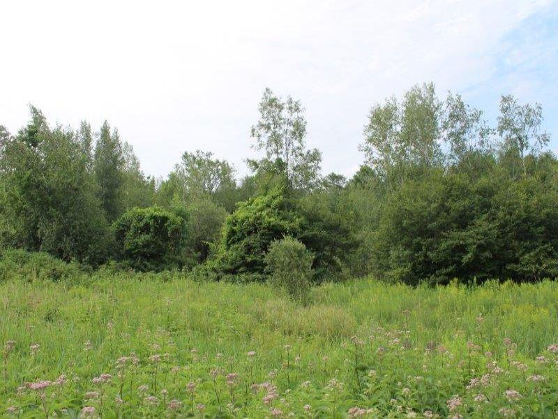 5 Acres Overlooking Owl Pond : Hermon : Saint Lawrence County : New York