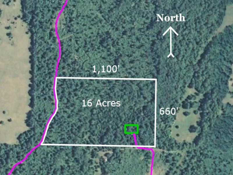 $500 Down-16 Ac Wooded Hunting Land : Hartville : Wright County : Missouri