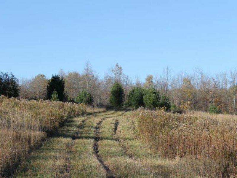 Land Near State Forest Financing : Annsville : Oneida County : New York