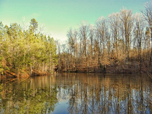 77 Acre Recreational Tract W/ Pond : Clinton : Laurens County : South Carolina