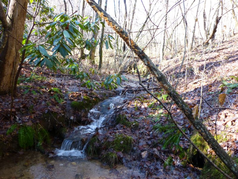 Reduced 22 Acres W/ Stream : Lakemont : Rabun County : Georgia