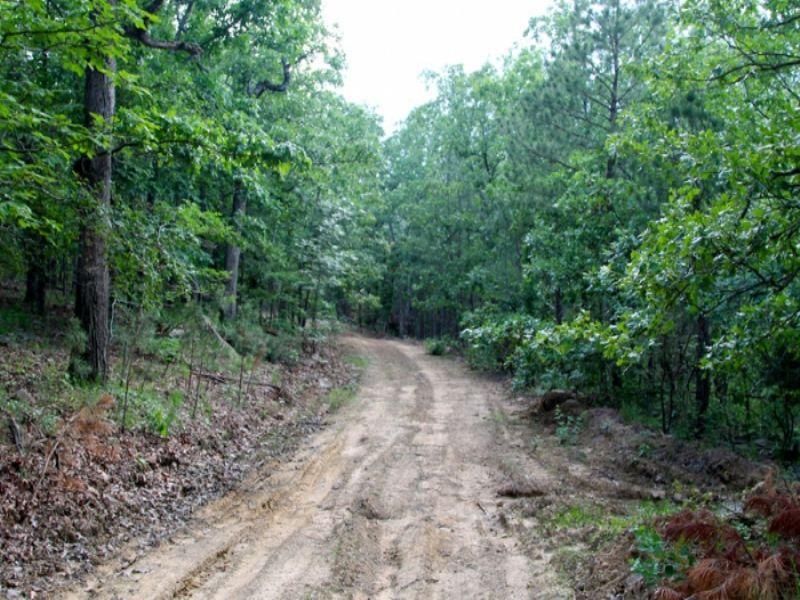 15.4 Acre Trophy Ridge Ii. Terms : Clayton : Pushmataha County : Oklahoma