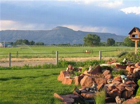 Lancaster Farms : Palisade : Mesa County : Colorado