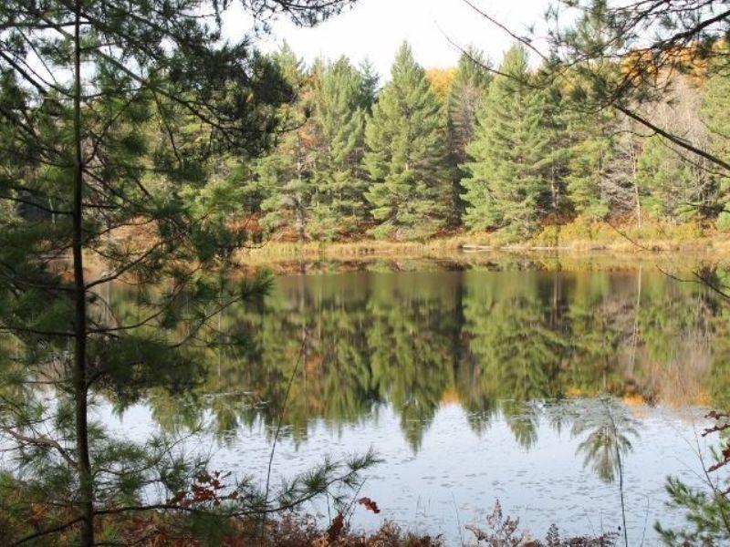 Gasley Lake Ff 2127 1098369 : Iron River : Iron County : Michigan