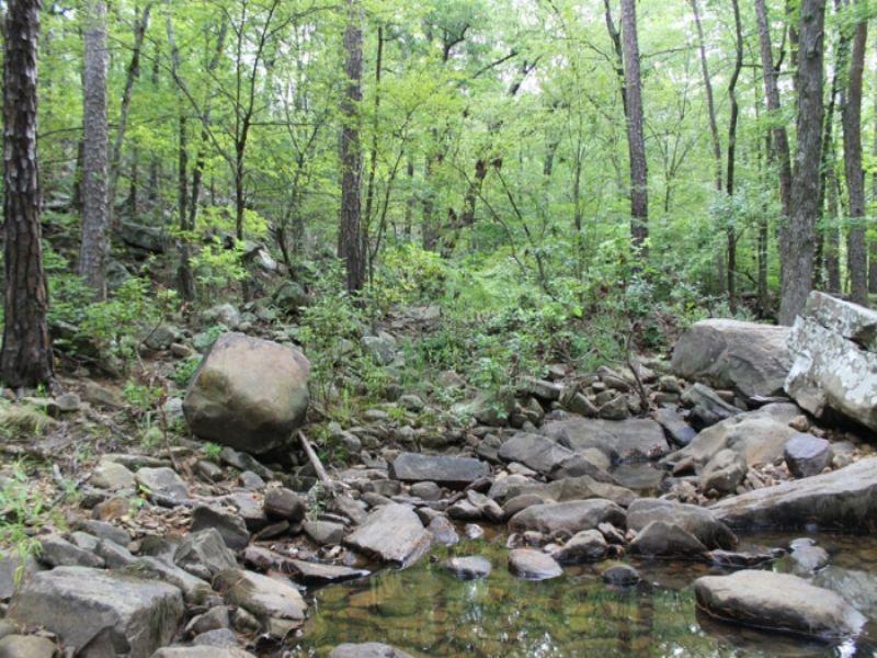 8.74 Acre Creek Lot, Trophy Ridge : Clayton : Pushmataha County : Oklahoma
