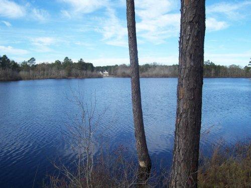 Recreational / Lake : Portal : Bulloch County : Georgia