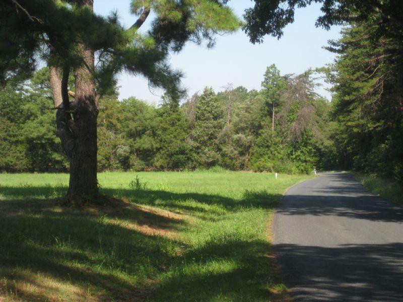 104 Acres Farm : Farmville : Cumberland County : Virginia