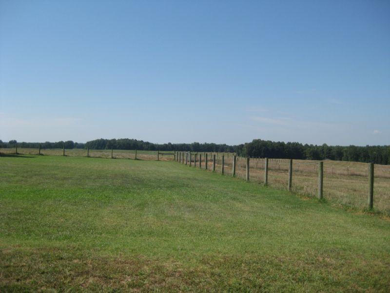 487 Acre Farm : Farmville : Cumberland County : Virginia