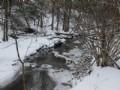 32 Acres Adirondacks With Stream