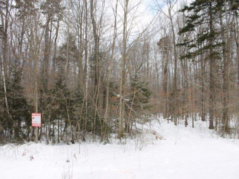 297 Acres Adirondacks Woods Pond : Ephratah : Fulton County : New York