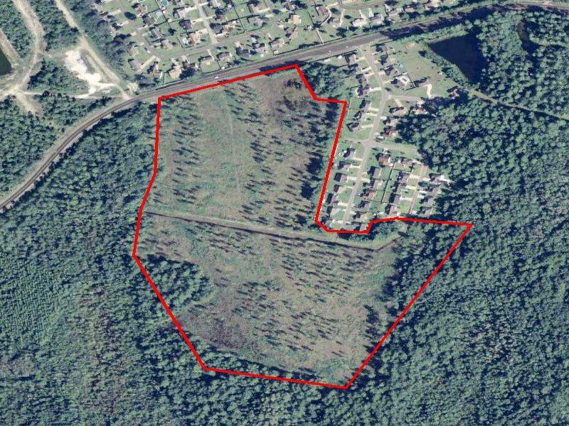 Developement Land : Ludowici : Long County : Georgia
