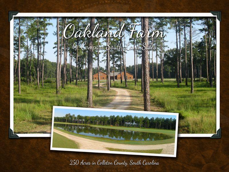 Oakland Farm : Ruffin : Colleton County : South Carolina