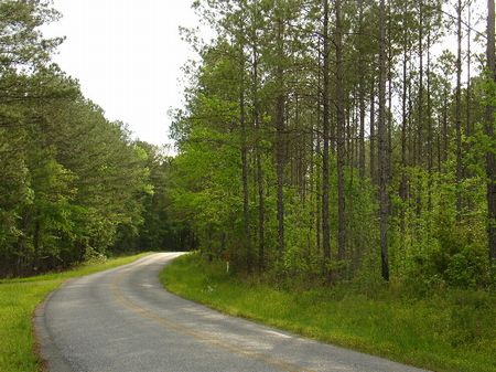 104 Acres Of  Country Land : Equality : Coosa County : Alabama