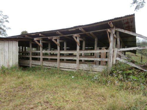 Remote 40 Ac Cattle Farm, River : Tuciurrique De Cartago : Costa Rica