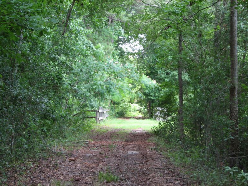 Moss Ridge Homestead : Nevils : Bulloch County : Georgia
