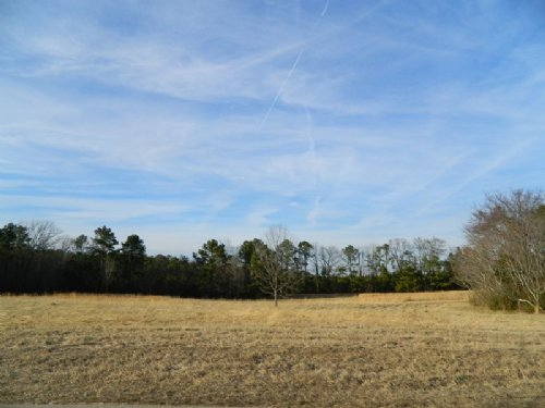 10.21 Acres Of Lovely Pasture : Carlton : Oglethorpe County : Georgia