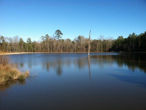 Pretty Pond At Flatwoods : Elberton : Elbert County : Georgia